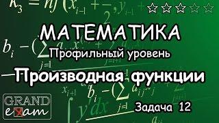 ЕГЭ Математика. Задание №12. Производная функции (Сложные задачи). Часть 2.