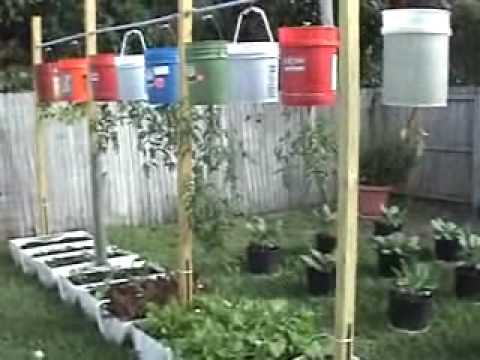 Delicieux Upside Down Hanging Vegetable Garden    Containers, Plastic Drums, Bags,  And Toilets