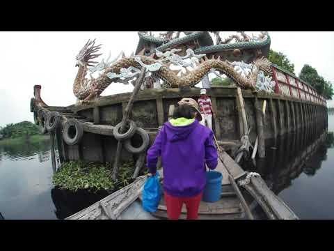 Video | Phù Châu Miếu 1 | Miếu Nổi | Ngũ Hành Môn | Thủy Long Cung | Travel