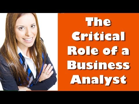 the-critical-role-of-the-business-analyst-|-why-every-organization-needs-a-ba