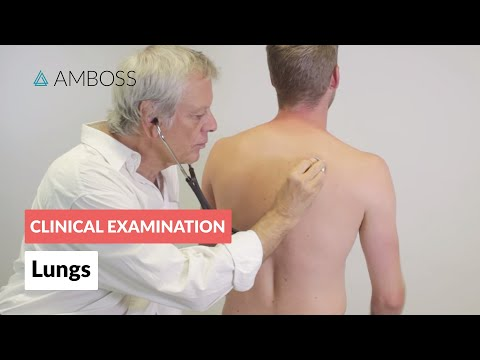 Examination of the lungs - Clinical examination | Δ AMBOSS