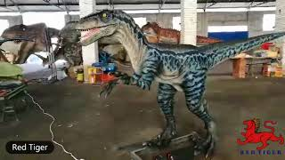 How to tame a velociraptor?