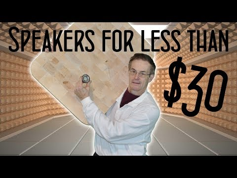 Fantastic DIY Speakers for less than $30!