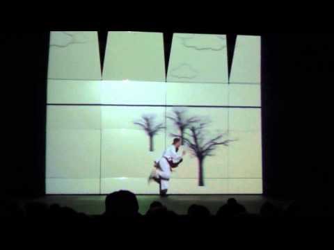 Martial Arts LCD Projector Demo Salem Hills High School Talent Show 2015