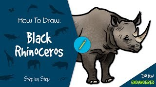 Draw Endangered: How to Draw a Black Rhinoceros