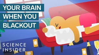 What Happens To Your Brain When You Get Blackout Drunk | The Human Body