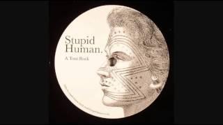 stupid human toni rock