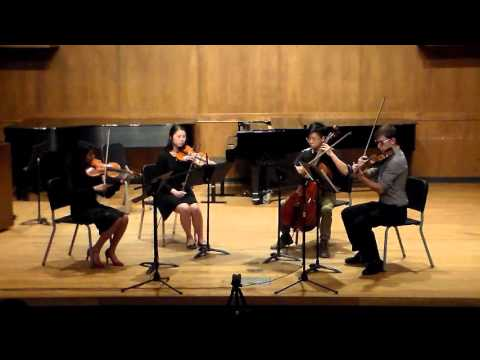 """""""My Favorite Things"""" - The Sound of Music (String Quartet) arr. Michael Langford"""