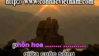 TânCổ-Karaoke-GIỌT MƯA KHUYA-YouTube