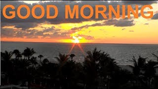 Good morning wishes whatsapp Good Morning Video Message Greeting Greetings