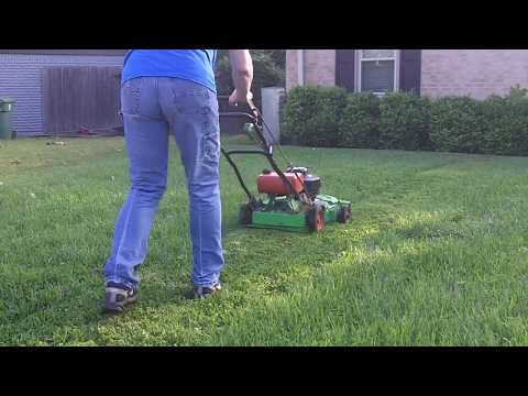 Lawn Mower Comparison: Lawnboy 8461 vs Lawnboy M Series
