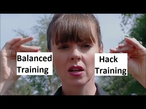 Balanced Dog Training vs Hacks - What You Should Know (K9-1.