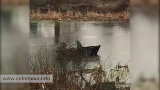 Браконьеры в Голицыно на реке Вязёмка