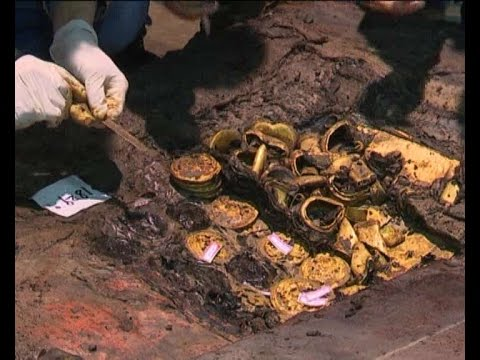 Record number of gold tablets found in 2,000-year-old Chinese tomb