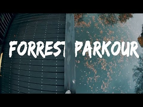 Forest | Parkour POV