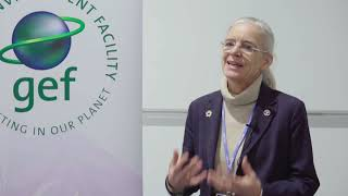 Interview with Mette Løyche Wilkie, Chief, Forestry Policy and Resource, FAO