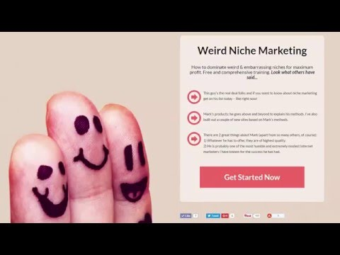 how to make money from niche marketing