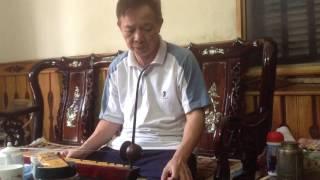 Tấu đàn Bầu Huế Xưa : Thể Hiện Triệu Ngọc Liễu