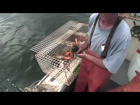 Lobstering (From the Bow Seat)