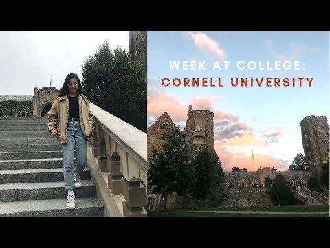 Follow Me: An Average Week at Cornell University