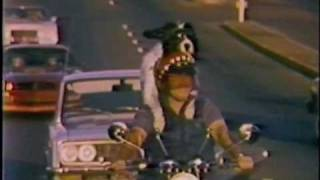 Bob Pounds and Motorcycle Mutt Dog - Sacramento KCRA Channel 3 1981