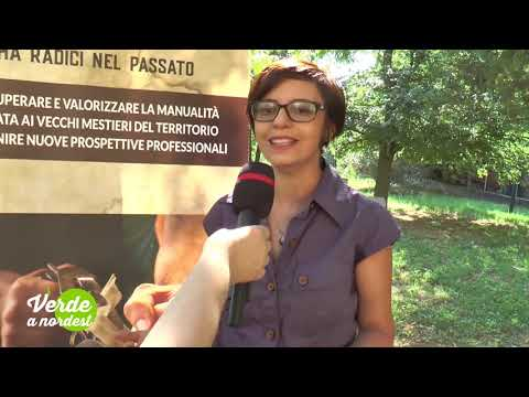 Secondo progetto raspberry pi from YouTube · Duration:  2 minutes 48 seconds