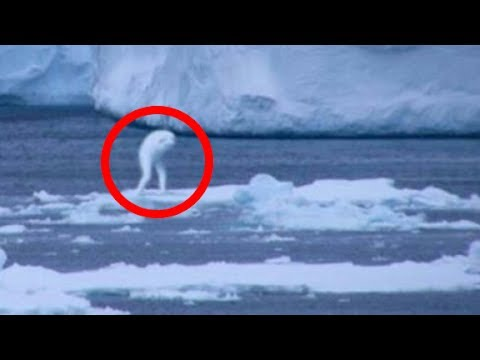 Thumbnail: 7 Strangest MYSTERIES OF ANTARCTICA