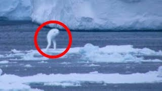 7 Strangest MYSTERIES OF ANTARCTICA