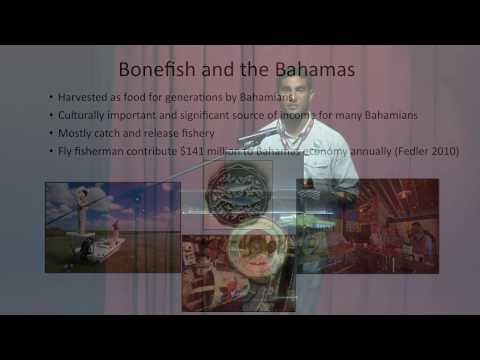 Bonefish & Tarpon Trust   Justin Lewis   BNHC 2016