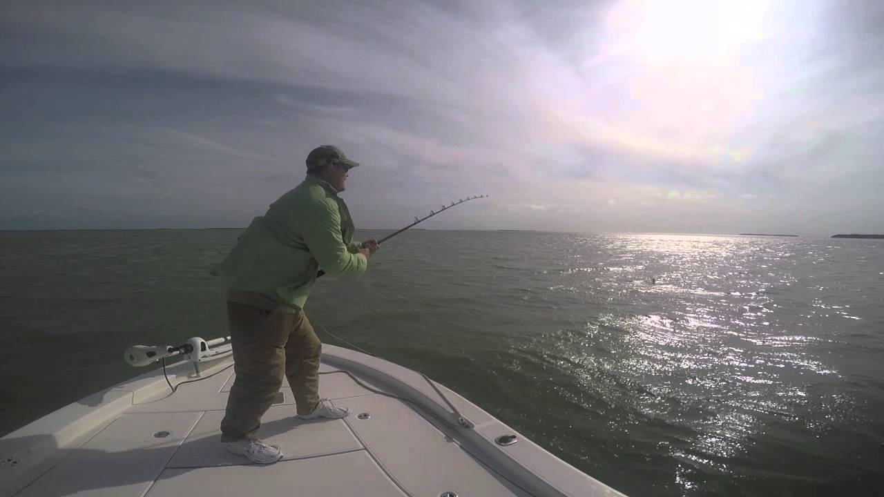Ultimate match fishing youtube for Ultimate match fishing