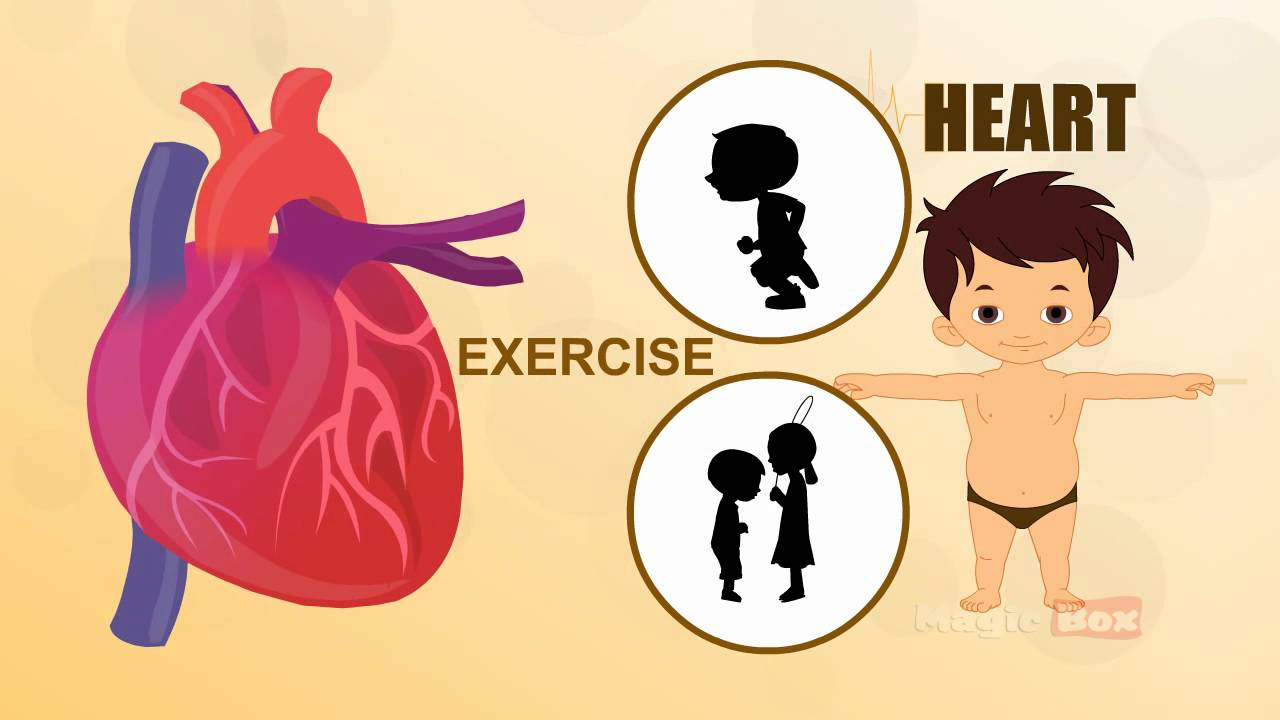 Heart Human Body Parts In Tamil Pre School Animated Videos For
