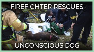 Firefighter Rescues Unconscious Dog—See His Fire Cam Footage!