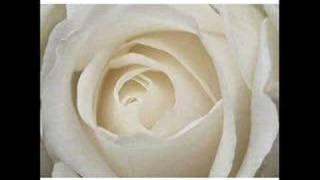 Download lagu Sharifah Aini - Mawar Putih Buat Mama