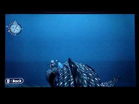 Endless Ocean (Wii) - Whale Shark