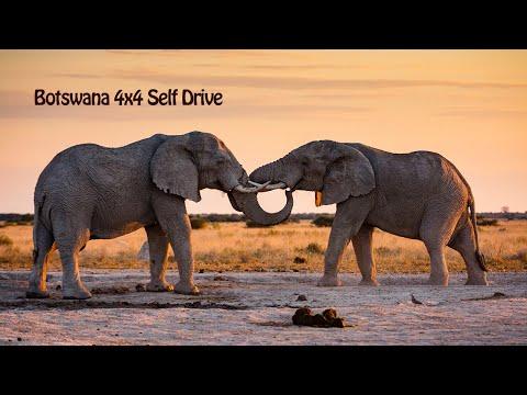 Botswana 2017 4x4 selfdrive