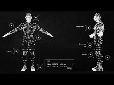 Unseen Ideas: Finding a new language for human disease - Human Cell Atlas