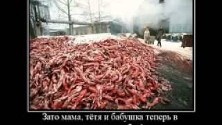 Как умирают люди и животные..
