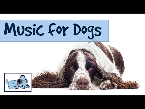 1 HOUR OF RELAXING DOG MUSIC! Compilation of Dog Songs, Calming Sounds, Reduce Separation Anxiety