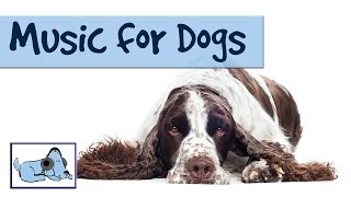 1 HOUR OF RELAXING DOG MUSIC! Compilation of Dog Songs, Calming Sounds, Reduce Separation Anxiety thumbnail