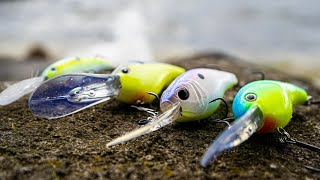 Deep Diving Crankbaits For Early Summer Bass