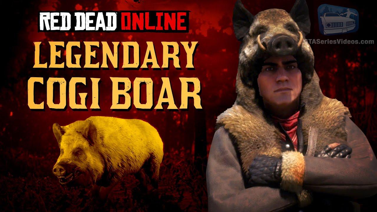 Red Dead Online - Legendary Cogi Boar Location [Animal Field Guide]