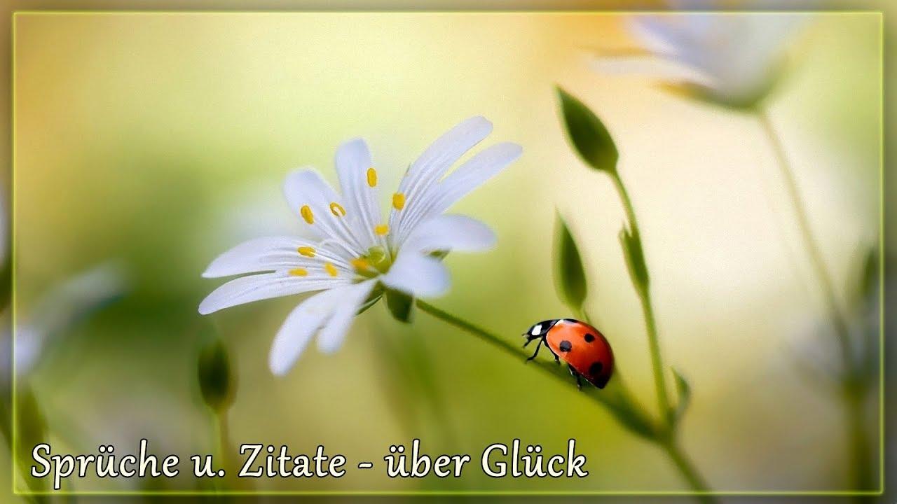 Lovely Sprüche Mit Glück Reference Of Sprüche U. Zitate - Glück *❀*