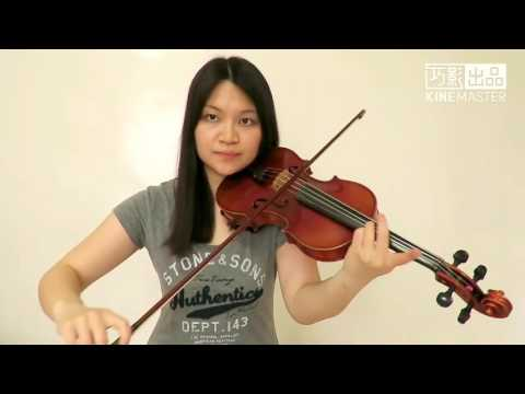 Imagine Dragons - Believer(Violin Cover)