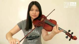 Imagine Dragons - Believer(Violin Cover)