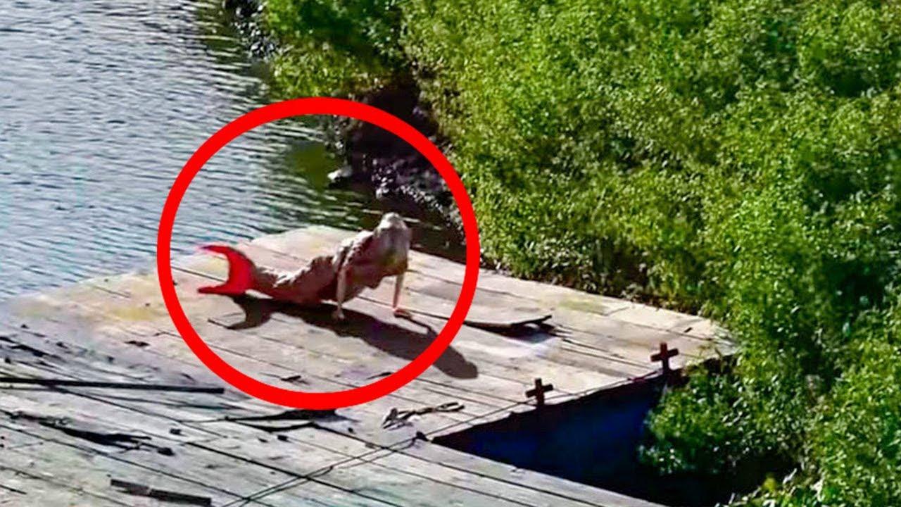 Download Esta Es La Sirena Del Amazonas Que Tiene Aterrado Al Mundo 😨