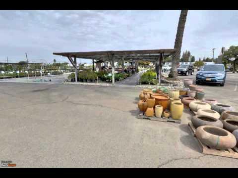 Riverside Nursery and Landscape Supplies   Fresno, CA   Garden Center