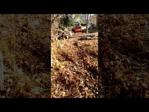 Tree removal and Land clearing in Long island New York Nassau County NY