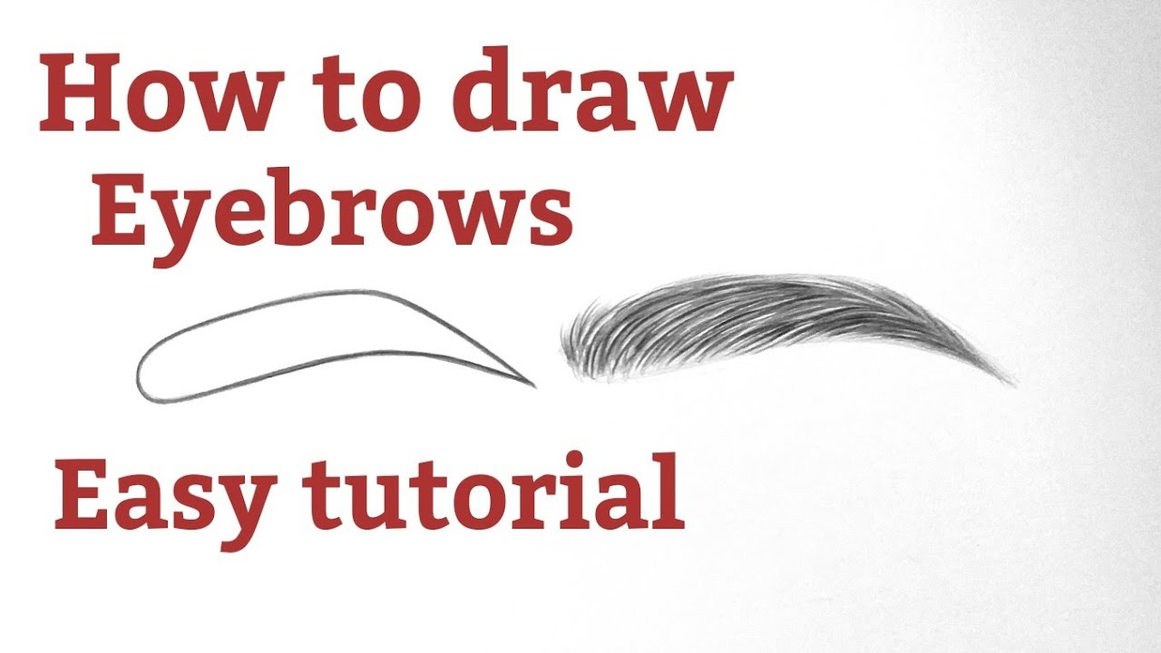 How to draw eyebrows drawing with pencil for beginners ...