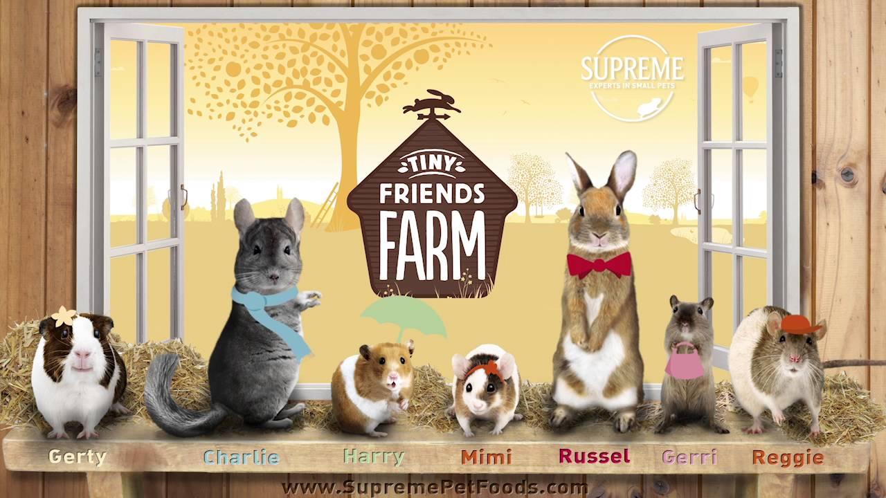 Tiny Friends Farm Commercial