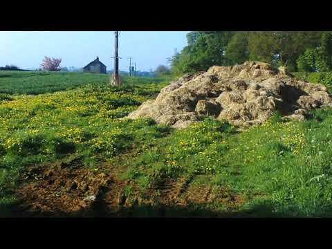Woolsthorpe by Belvoir
